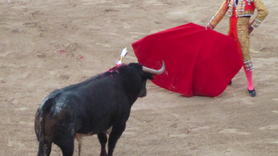 Dispatches from a Mexican Bullfight