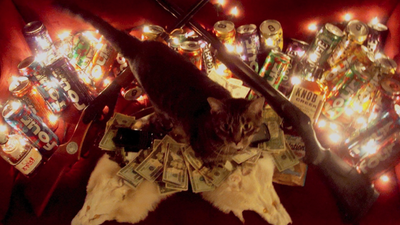 Cats, Cocaine, and Currency