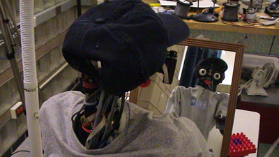 Researchers Just Revealed This Self-Aware Robot