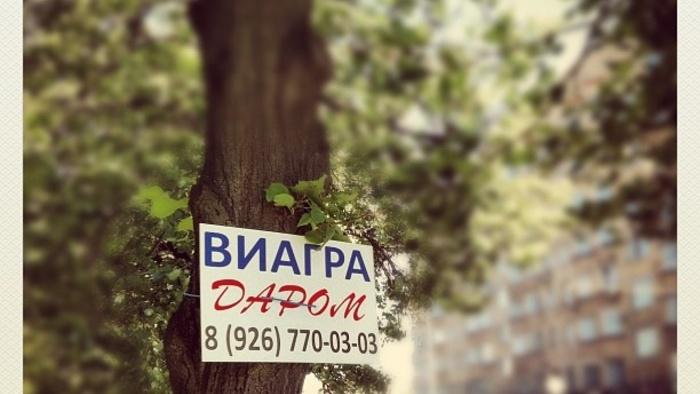 знакомства без регистрации бесплатно в городе артем
