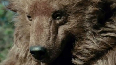 """Bear"" de Nash Edgerton"