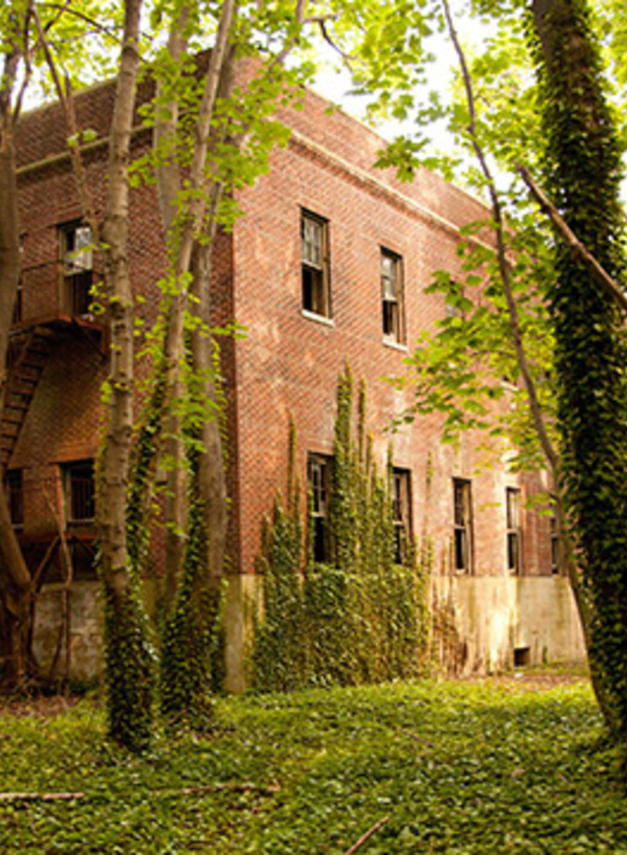 I Kayaked to New York City's Abandoned North Brother Island