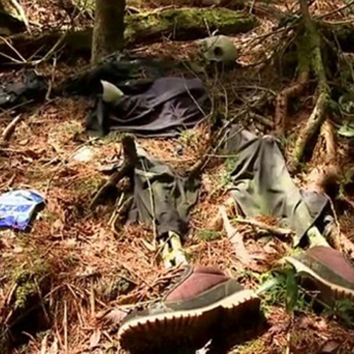 Aokigahara Suicide Forest Vice United States