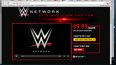 The WWE Killed Wrestling with the WWE Network