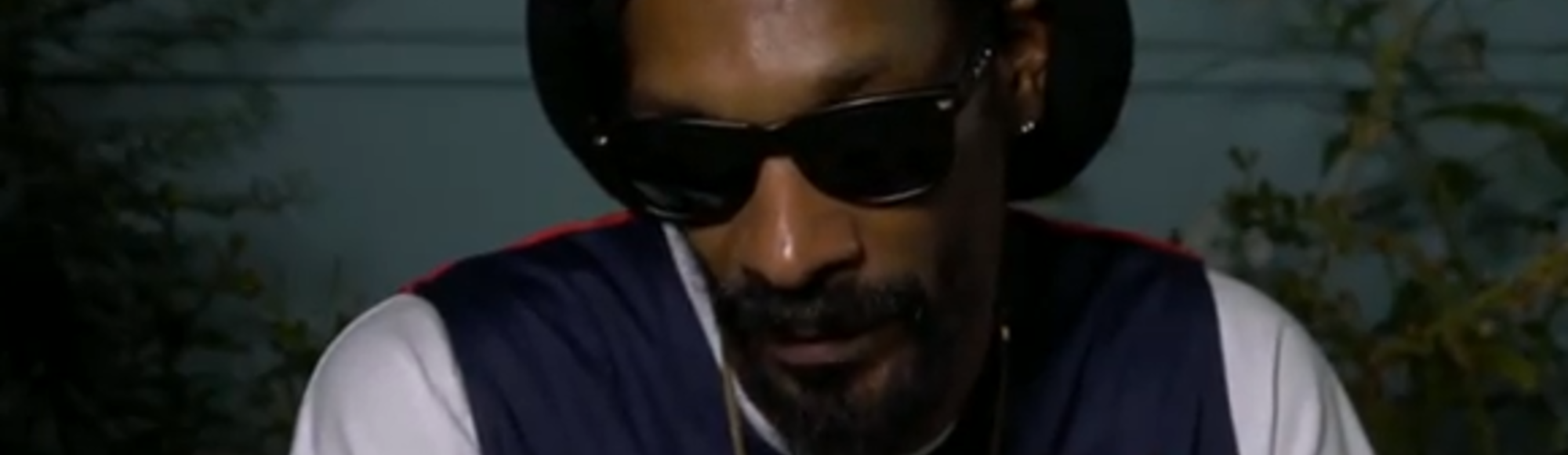 We Got High with Snoop Lion
