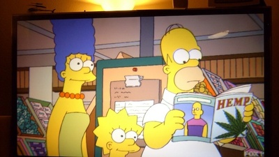 The Simpsons Marijuana Novel Is the Strangest, Most Wonderful Thing on Twitter