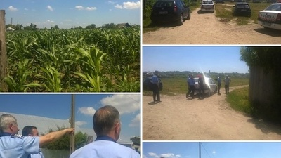 A Romanian Man's House Was Stolen and Replaced with a Cornfield