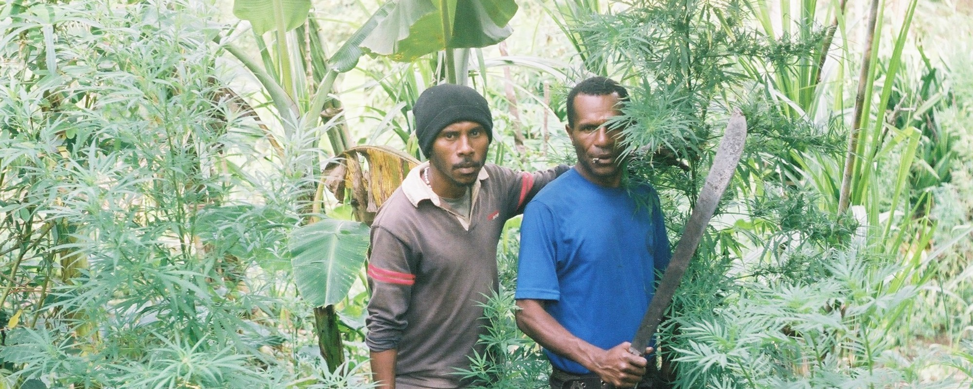 Polaroids from Papua New Guinea's Weed-Growing Highlands
