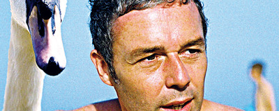 O Disco é Bom - Baxter Dury - It's a Pleasure