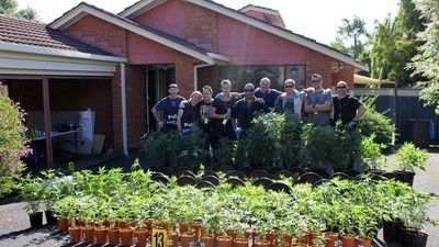 Riding Along with the Anti-Drugs Squad on a Grow-House Raid