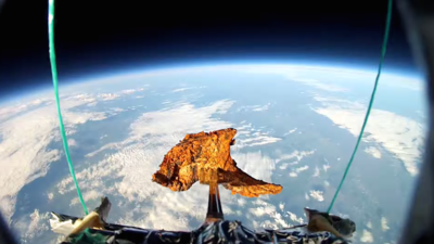 Exclusive: Why I Just Sent a Lamb Chop Into Space