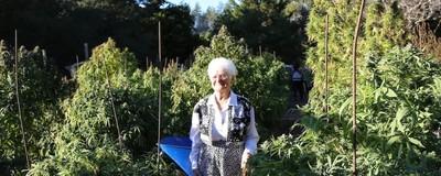 Una abuelita de 91 años es la reina de la cocina cannábica