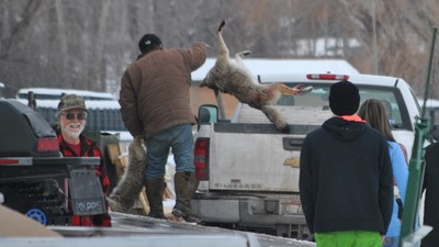 Environmentalists Couldn't Stop the Slaughter at Idaho's Annual Coyote and Wolf Derby