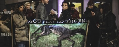 Animal Rights Activists Protested Britain's Limping Annual Greyhound Racing Industry Awards