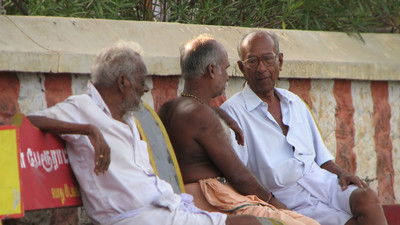 South India Is Struggling to Overcome Its Forced Euthanasia Problem
