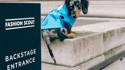 We Got Designers to Make a Sausage Dog Some Outfits and Took Him to London Fashion Week
