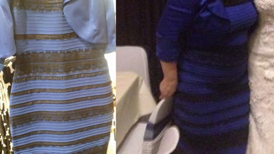 We Asked a Color Vision Expert About the Color of that Dress