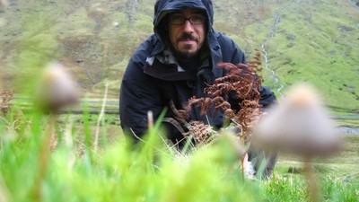 Britain's Premier 'Magic Mushroom Explorer' Told Us How Shrooms Could Change the World