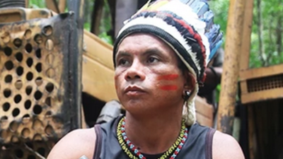 Fighting the Amazon's Illegal Loggers
