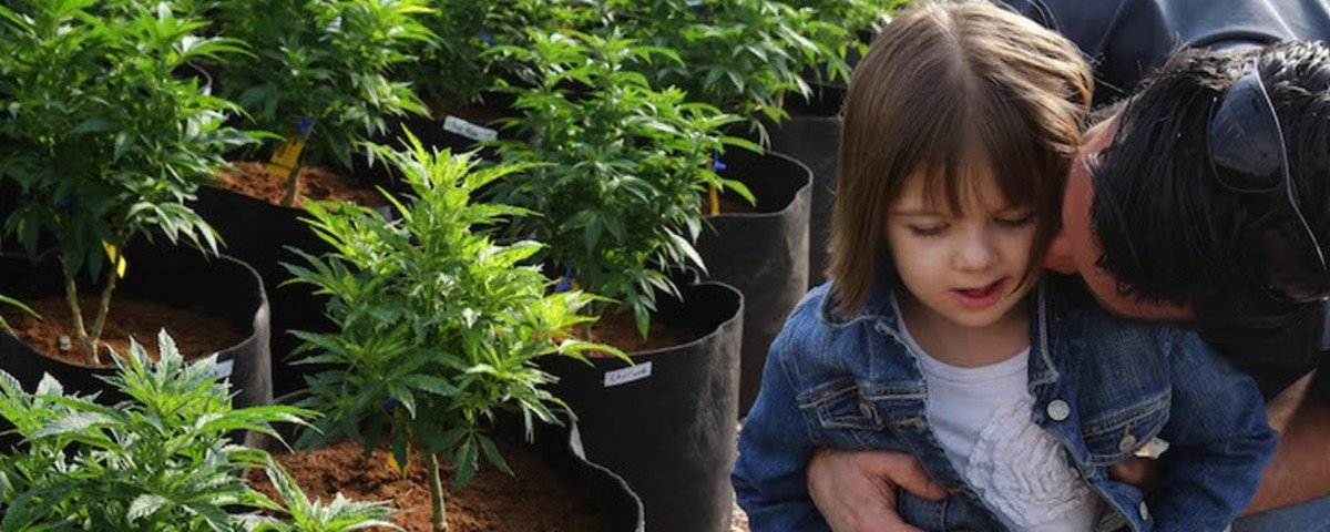 The Plight of Colorado's 'Marijuana Refugees'