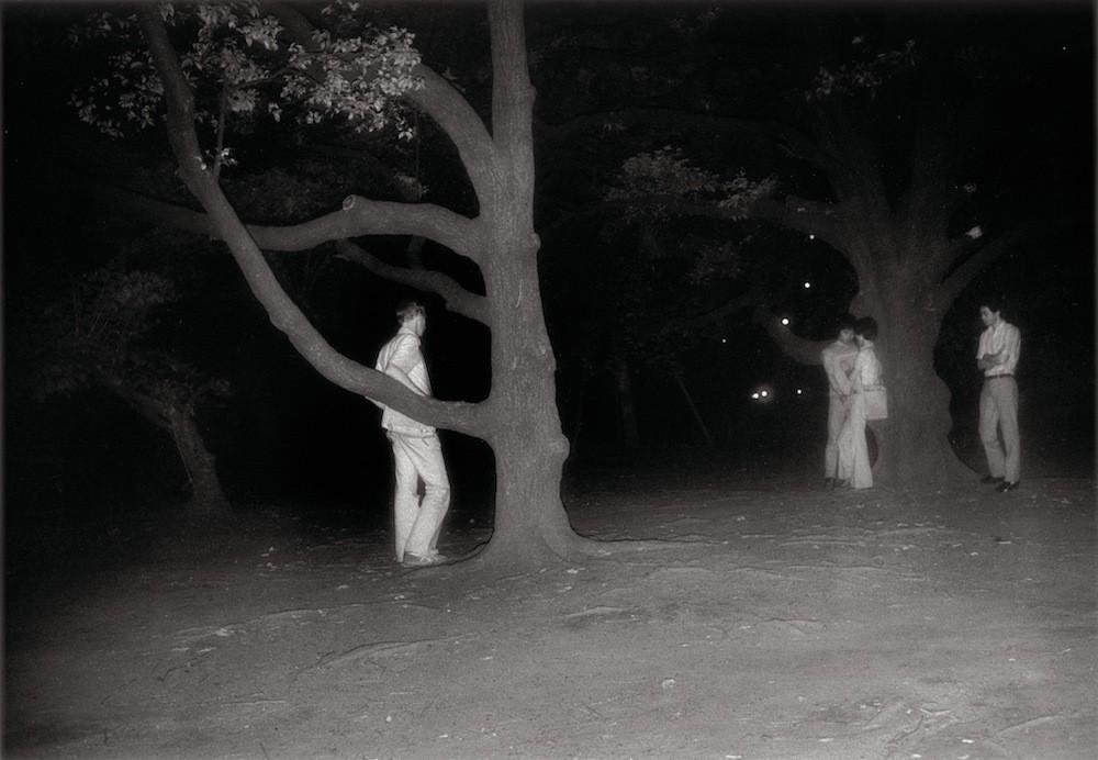 Секс истории вуайеров 23 фотография