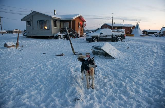 A husky sits outside of modern Colville Lake home, equipped with satellite TV, a Ford F-150 and teepeee.