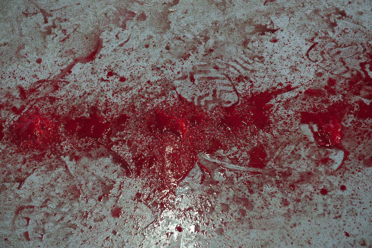 Πολλά κοπάδια θανατώθηκαν εξαιτίας των προληπτικών μέτρων για τον καταρροϊκό πυρετό και την ευλογιά.